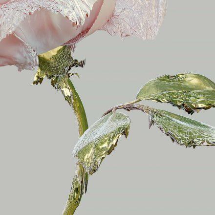 web-print-roseone-pink-2